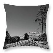 Zion Park Geology Texture Throw Pillow