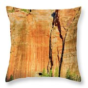 Zion Rock Wall Throw Pillow