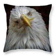 Zombie Eagle Look Throw Pillow
