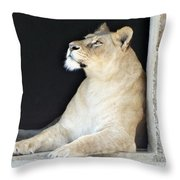 The Queen Of Animals Throw Pillow