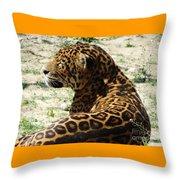 Zoo 2015 006 Throw Pillow