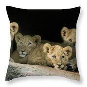 Four Cubs Throw Pillow