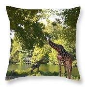 Zoo Landscape Throw Pillow