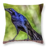 Zoo2 Throw Pillow