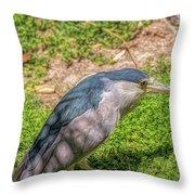 Zoo4 Throw Pillow