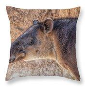 Zoo7 Throw Pillow