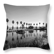 Zyzzx Lake Two Throw Pillow