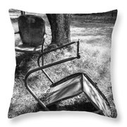044 - Old Friends Throw Pillow
