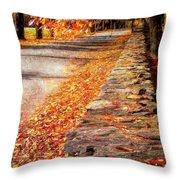 Autumn Avenue Throw Pillow