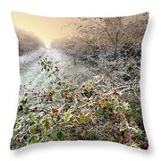 Autumn Frosts Throw Pillow