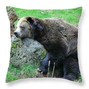 Bear Sleeping On A Rock. Throw Pillow