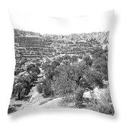 Bethlehem 1886 Throw Pillow