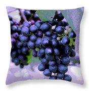 Blue Grape Bunches 7 Throw Pillow