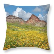 Boundary Cone Butte Throw Pillow