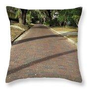 Brick Road In Palatka Florida Throw Pillow
