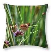 Buckeye Butterflies Throw Pillow