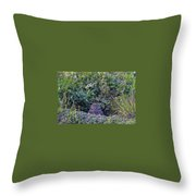 Burrowing Owl Throw Pillow by Paul Schultz