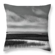 California Lagoon Throw Pillow