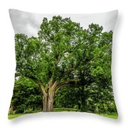 Centennial Oak, Salem Oak Tree Throw Pillow by Louis Dallara