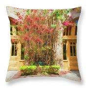 Courtyard Doors St Augustine 002 Throw Pillow