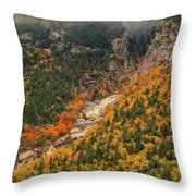 Crawford Notch Fall Foliage Throw Pillow