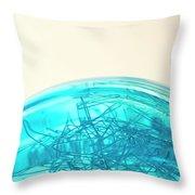 Glass Bowl, Close Up Throw Pillow