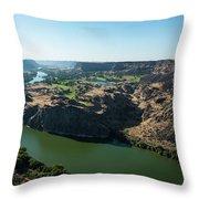 Green Snake River Throw Pillow