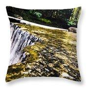 Hogback Ridge Park Throw Pillow