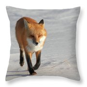Just Passing Through Throw Pillow by Susan Rissi Tregoning