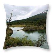 Laguna Verde, Tierra Del Fuego National Park, Ushuaia, Argentina Throw Pillow
