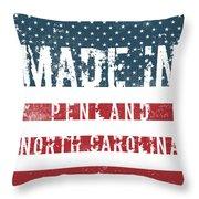 Made In Penland, North Carolina Throw Pillow