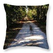 Dirt Road Throw Pillow