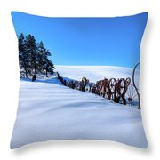 Old Wheels At The Barn Throw Pillow