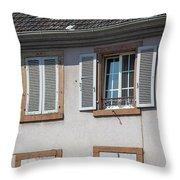 Open And Closed Throw Pillow