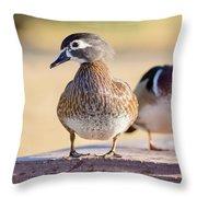 Pair Of Wood Ducks Throw Pillow