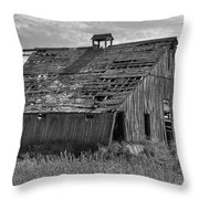 Palouse Barn 9933 Throw Pillow
