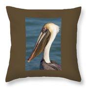 Pelican Close Up Throw Pillow by Paul Schultz