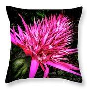 Pink Princess Bromeliad Throw Pillow