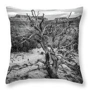 Pinyon Pine Throw Pillow