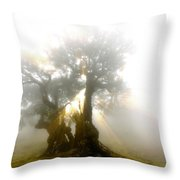 Place Of Silence Throw Pillow
