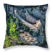 Pons Aemilius Throw Pillow