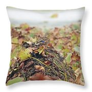 Queen Of The Mound Throw Pillow
