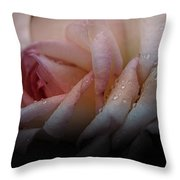 Rose Of Summer Throw Pillow
