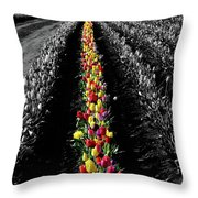 Rows Of Tulips Throw Pillow