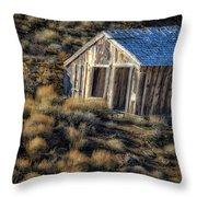 Rustic  4461 Throw Pillow