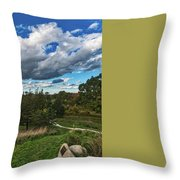 Sagamore Hill Throw Pillow