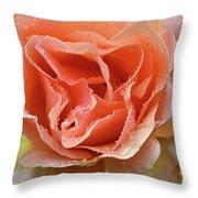 Salmon Pink Rose Throw Pillow