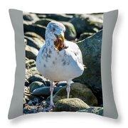 Seagull With Sail Throw Pillow
