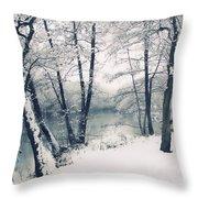 Snow Pond Throw Pillow