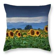 Sunflowers Under A Stormy Sky Throw Pillow by John De Bord